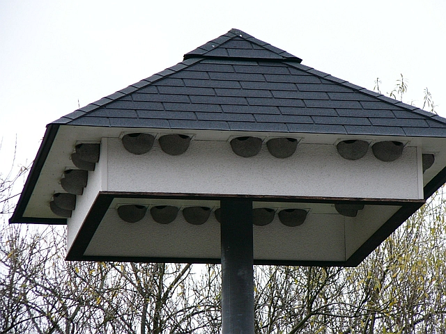 Swallow Houses 67